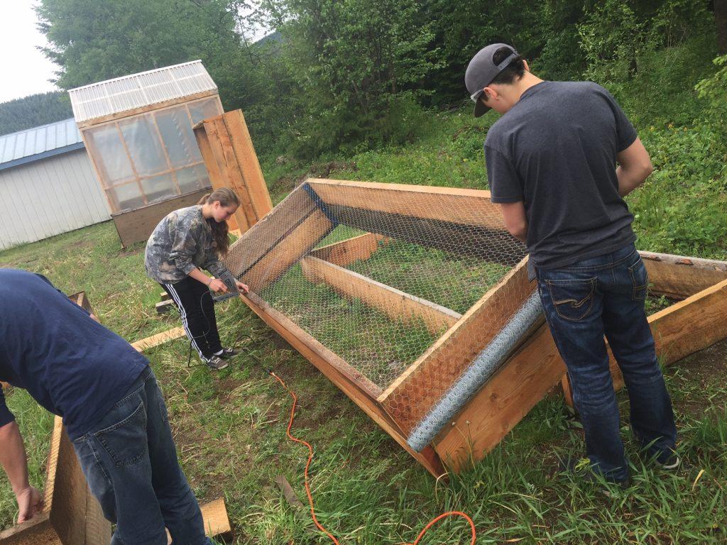 Box building-students